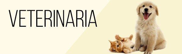 banner veterinaria